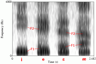 Identifying sounds in spectrograms